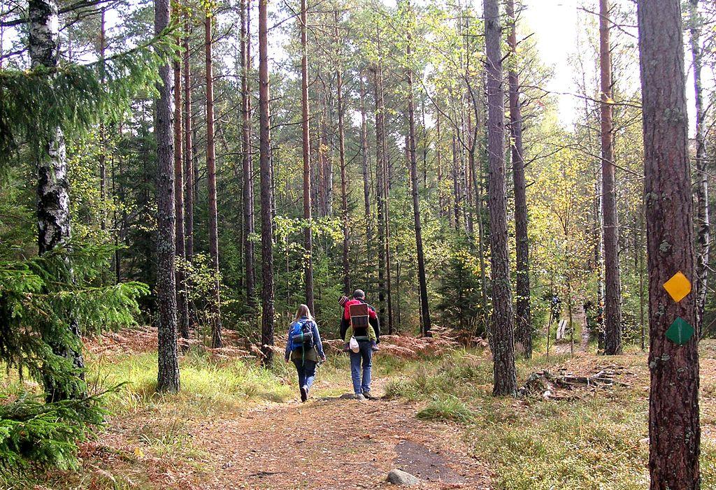 Ytterligare Samiska spår i Stockholm med omnejd