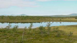 Renprodukter   Vårt Sápmi — med våra råvaror, vårt tillagningssätt, våra traditioner, våra smaker och våra smakminnen.