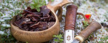 Sapmi Ren & Vilt – Älgkött, torkat renkött, viltkorv, styckbitar mm